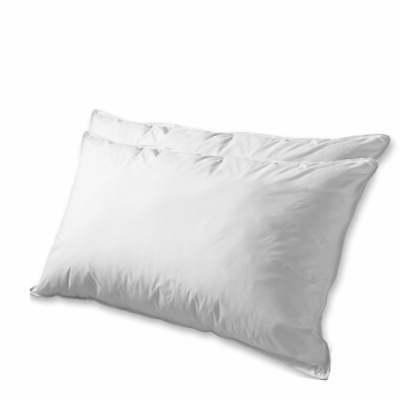 1200 thread count goose feather pillow set